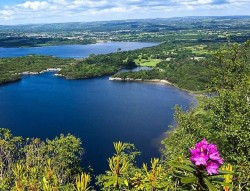 View of Killarney National Park