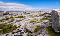 Photo of The Burren